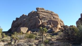 Split Rock Loop Trail DSCF9081