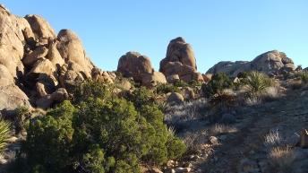 Split Rock Loop Trail DSCF9187