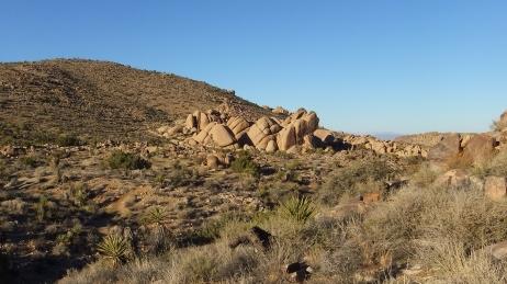 Split Rock Loop Trail DSCF9192