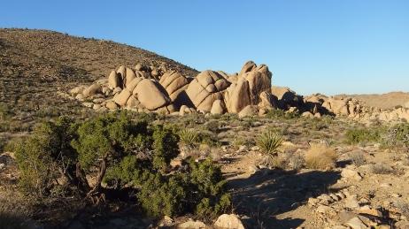 Split Rock Loop Trail DSCF9197