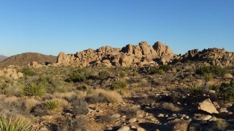 Split Rock Loop Trail DSCF9203