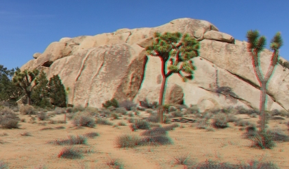 Peyote Cracks, west face