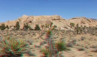 The Peyote Cracks Joshua Tree NP 3DA 1080p DSCF0880