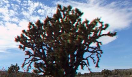 Upper Covington Flat Clouds 3DA 1080p DSCF3846
