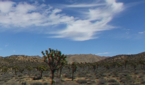 Upper Covington Flat Joshua Tree NP 3DA 1080p DSCF3784