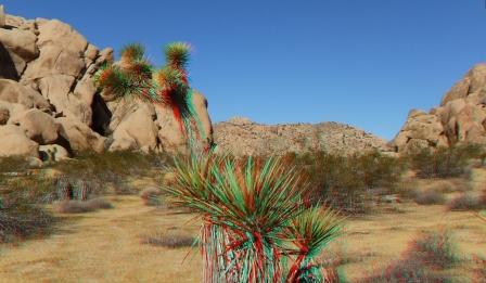 West Tiers Joshua Tree NP 3DA 1080p DSCF8582