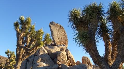Ryan Campground Headstone Rock DSCF0483