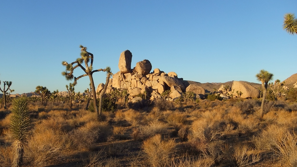 Headstone Rock, south side, from Ryan Campground