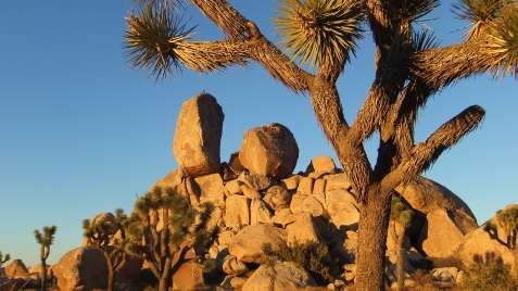 Ryan Campground Headstone Rock DSCF6310