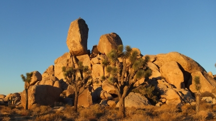 Ryan Campground Headstone Rock DSCF6312