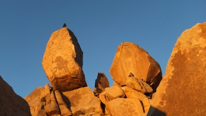 Ryan Campground Headstone Rock DSCF6332