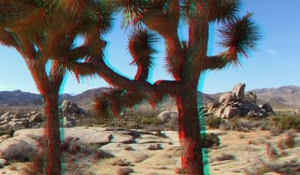 Ryan Ranch 3DA 1080p DSCF9502