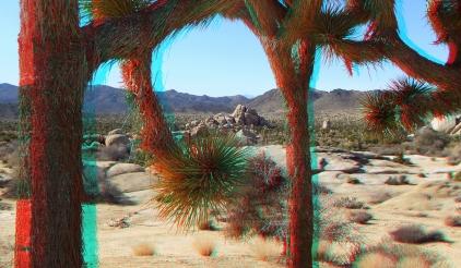 Ryan Ranch 3DA 1080p DSCF9503