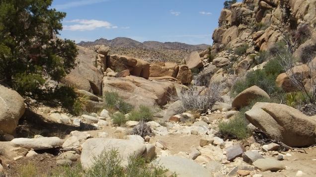 Desert Queen Mine dam DSCF4178
