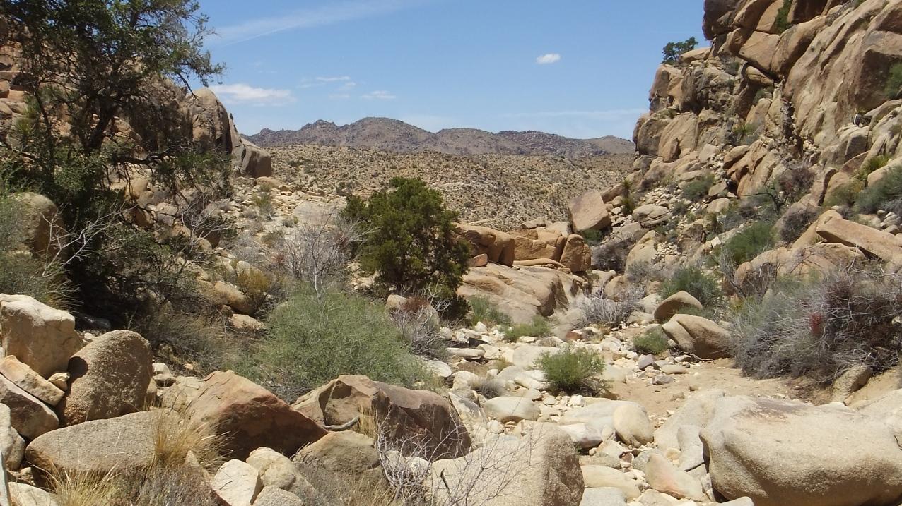 Desert Queen Mine dam DSCF4180