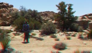 Desert Queen Mine Snake Wash 3DA 1080p DSCF4004