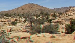 Desert Queen Mine Snake Wash 3DA 1080p DSCF4030