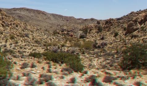 Desert Queen Mine Snake Wash 3DA 1080p DSCF4038