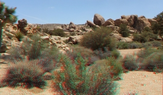Desert Queen Mine Snake Wash 3DA 1080p DSCF4054