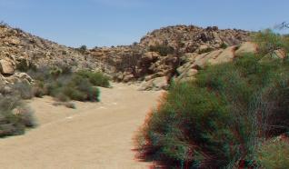 Desert Queen Mine Snake Wash 3DA 1080p DSCF4058