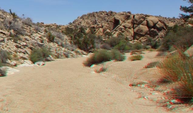 Desert Queen Mine Snake Wash 3DA 1080p DSCF4069