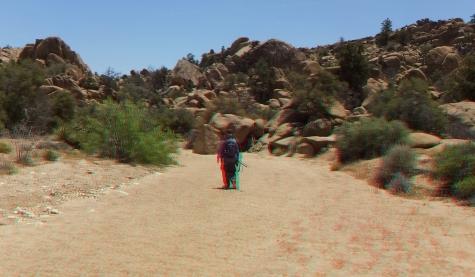 Desert Queen Mine Snake Wash 3DA 1080p DSCF4097