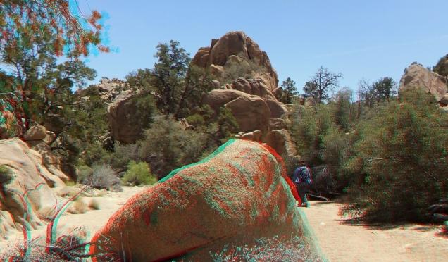Desert Queen Mine Snake Wash 3DA 1080p DSCF4107
