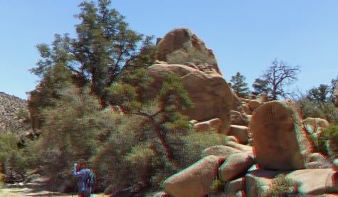 Desert Queen Mine Snake Wash 3DA 1080p DSCF4108