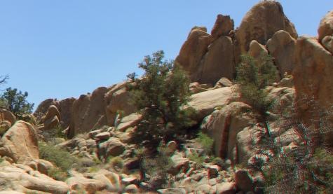 Desert Queen Mine Snake Wash 3DA 1080p DSCF4117