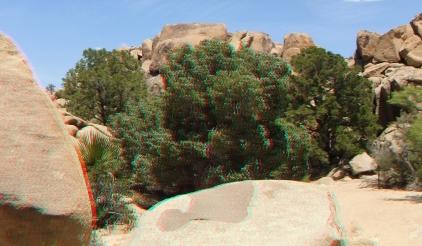 Desert Queen Mine Snake Wash 3DA 1080p DSCF4124
