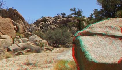 Desert Queen Mine Snake Wash 3DA 1080p DSCF4131