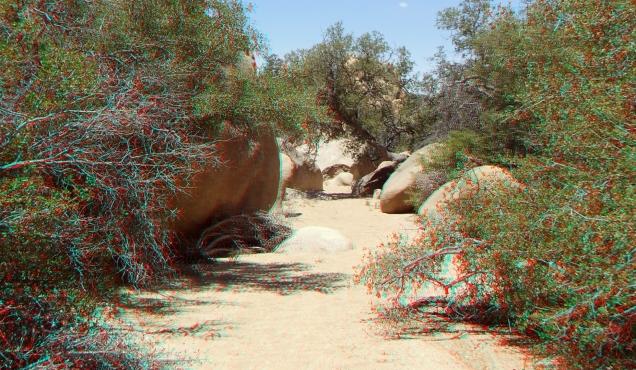 Desert Queen Mine Snake Wash 3DA 1080p DSCF4137