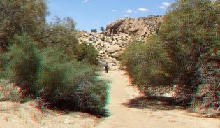 Desert Queen Mine Snake Wash 3DA 1080p DSCF4146