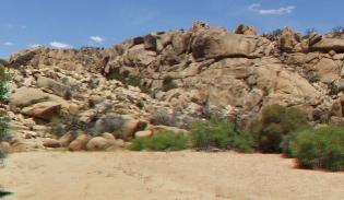 Desert Queen Mine Snake Wash 3DA 1080p DSCF4147