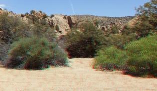 Desert Queen Mine Snake Wash 3DA 1080p DSCF4153