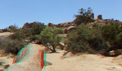 Desert Queen Mine Snake Wash 3DA 1080p DSCF4190