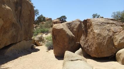 Desert Queen Mine Snake Wash DSCF4127