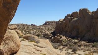 jumbo-rocks-joshua-tree-np-dscf4581