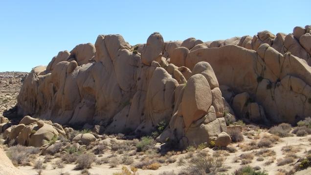 jumbo-rocks-joshua-tree-np-dscf4582