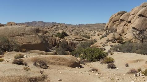 jumbo-rocks-joshua-tree-np-dscf4590
