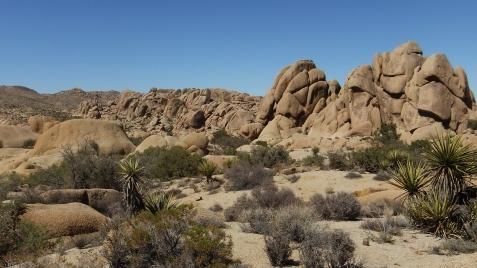 jumbo-rocks-joshua-tree-np-dscf4594