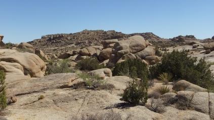 jumbo-rocks-joshua-tree-np-dscf4608