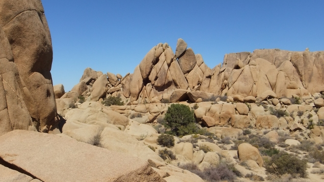 jumbo-rocks-teepee-rock-wall-dscf4565