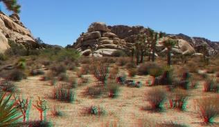 mounds-joshua-tree-np-3da-1080p-dscf4503