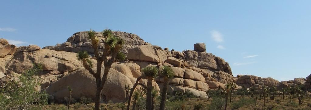 mounds-joshua-tree-np-dscf5399