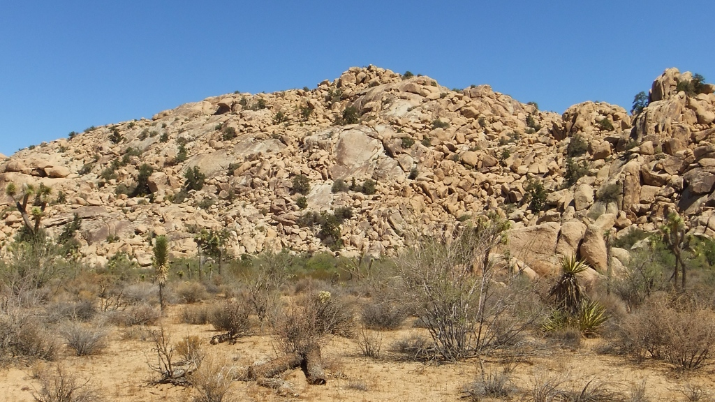 Pixar Wall, Eve Slab and Walee Rock hillside