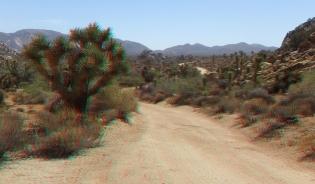 lost-horse-ranger-station-3da-1080p-dscf4739