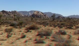 lost-horse-ranger-station-3da-1080p-dscf4776