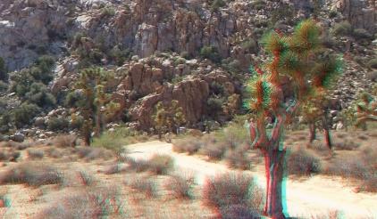 lost-horse-ranger-station-3da-1080p-dscf4777