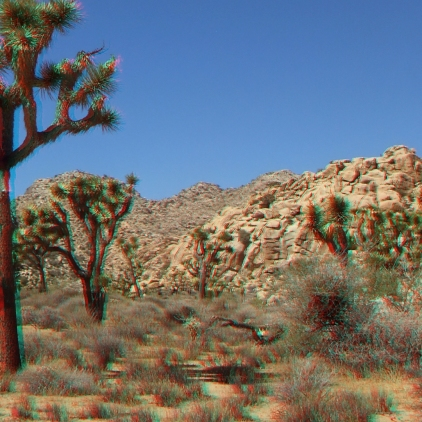 lost-horse-ranger-station-3da-1080p-dscf4803